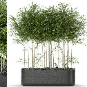3D bambusoideae bamboo flower