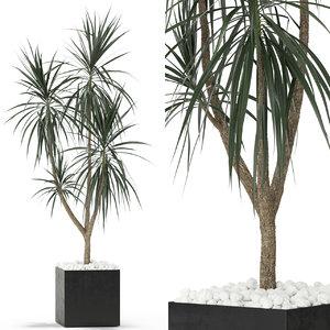 3D plants 392