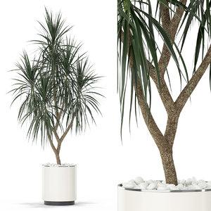 plants 397 3D