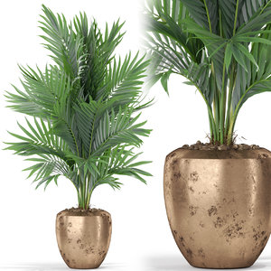 3D plants 401 model