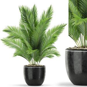 3D plants 402