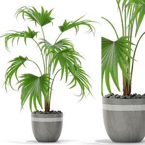 plants 407 3D model