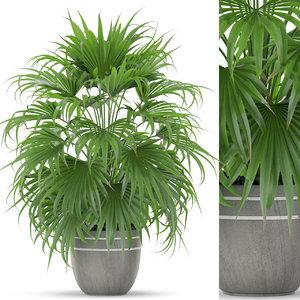 plants 409 3D