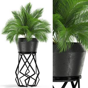 plants 412 3D