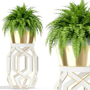 3D plants 413