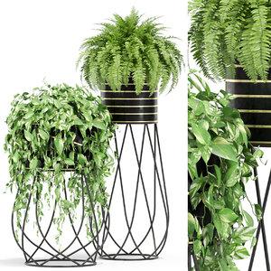 plants 414 3D