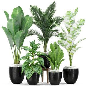 3D plants 415 model
