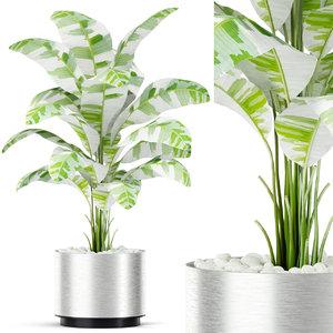 3D model plants 416