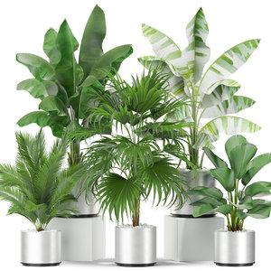 plants 419 3D model