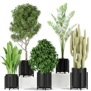 plants 420 3D model