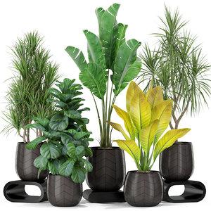 3D model plants 423