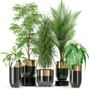 3D plants 424