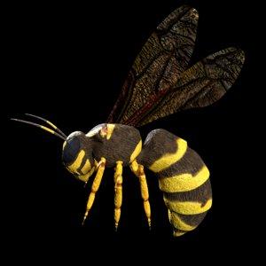 wasp rigged model
