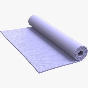 3D gym carpet rollup v2
