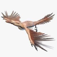 Archaeopteryx Animated