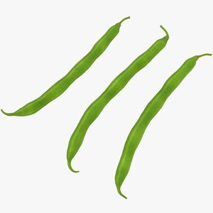 3D green bean