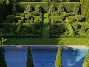 boxwood shrub includes growfx 3D model