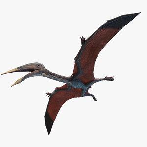 hatzegopteryx 3D model