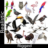Rigged Low Poly Bird Collection