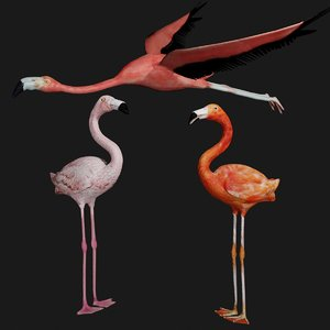 3D flamingo rigged
