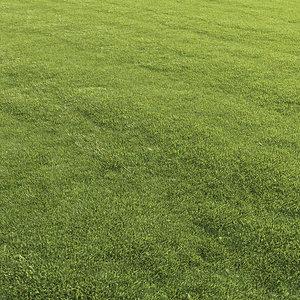 mowed lawn grass 3D