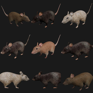 mouse rigged model