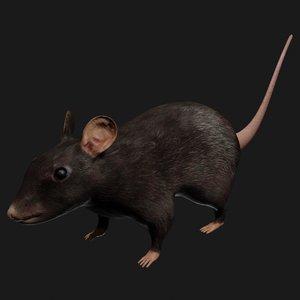 black mouse rigged 3D model