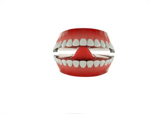 anatomy mouth 3D model