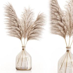 3D dried flower pampas grass