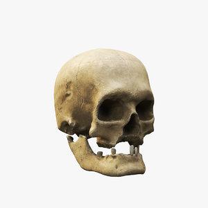 3D human skull v2 model