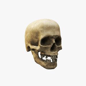 skull v3 model