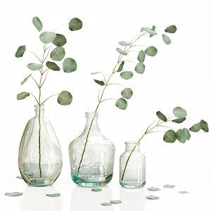 eucalyptus 2 vases decor 3D model