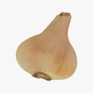 onion yellow 03 raw 3D model