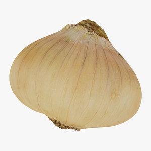 onion yellow 04 raw 3D