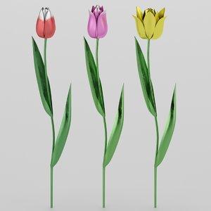 3D tulips metal