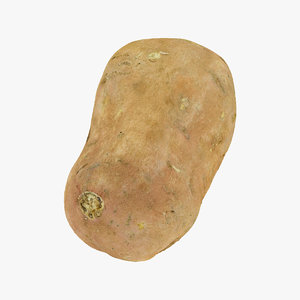 3D model sweet potato 02 raw