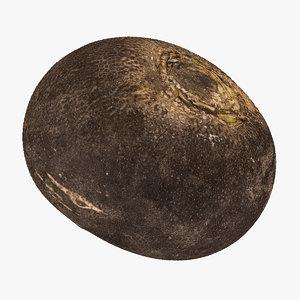 turnip black 02 raw 3D model