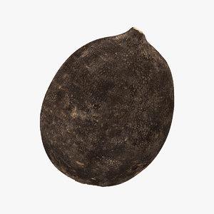 3D turnip black 03 raw model