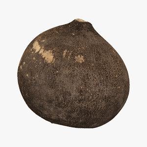 3D model turnip black 05 raw