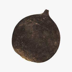 turnip black 06 raw 3D model