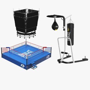 3D real boxing ring