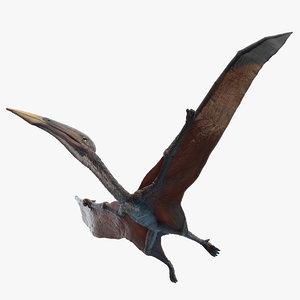 3D hatzegopteryx