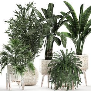 plants interior rattan houseplants model