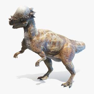 3D pachycephalosaurus p model