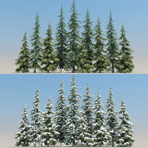 3D 10 tree plant