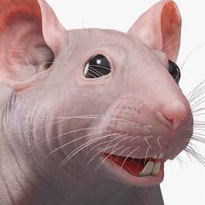 mouse real skin 3D model