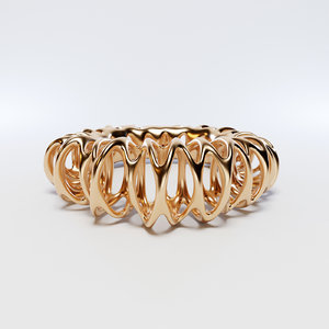 ring coil 3D