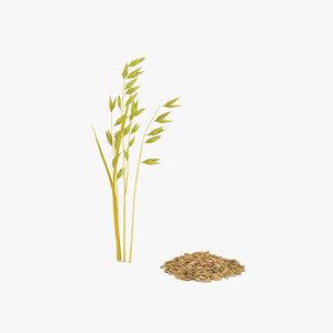 3D model oat grain