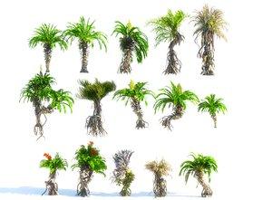 3D prehistoric plants model