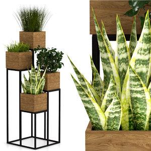 indoor plants pots model
